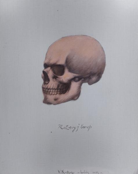 Володимир Костирко. Рожевий череп, 2013, полотно, олія