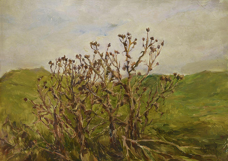 Михайло Добронравов. Будяки, 1955; картон, олія
