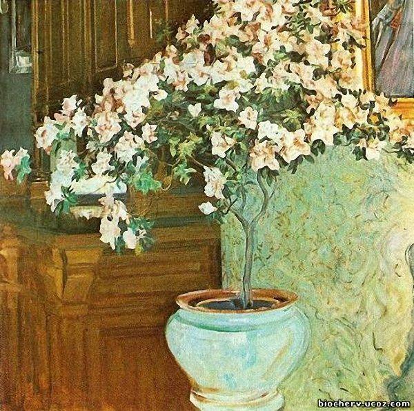 Олекса Новаківський. Азалія, 1914
