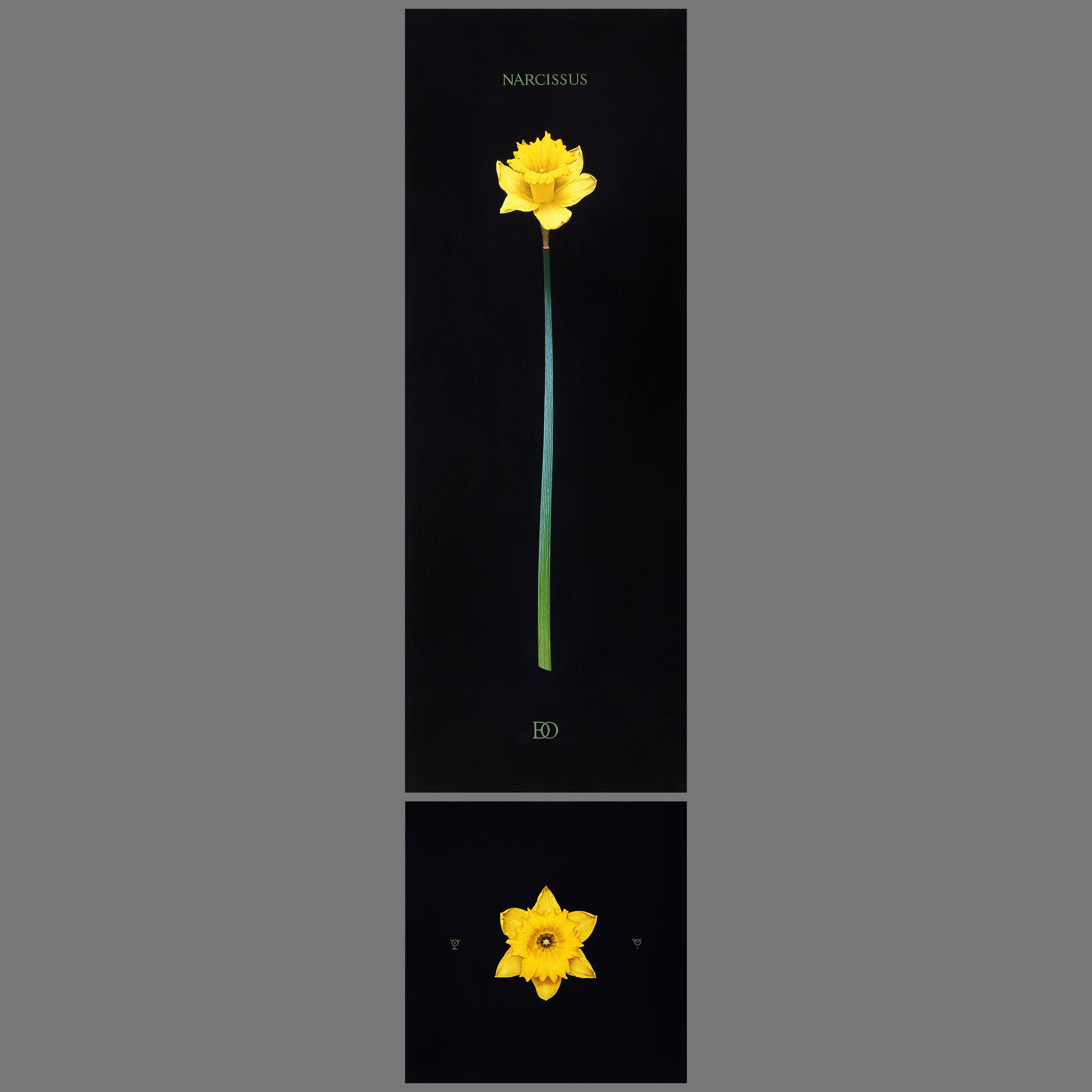 Юлія Долинська. Narcissus, 2019; 70x25+25x25