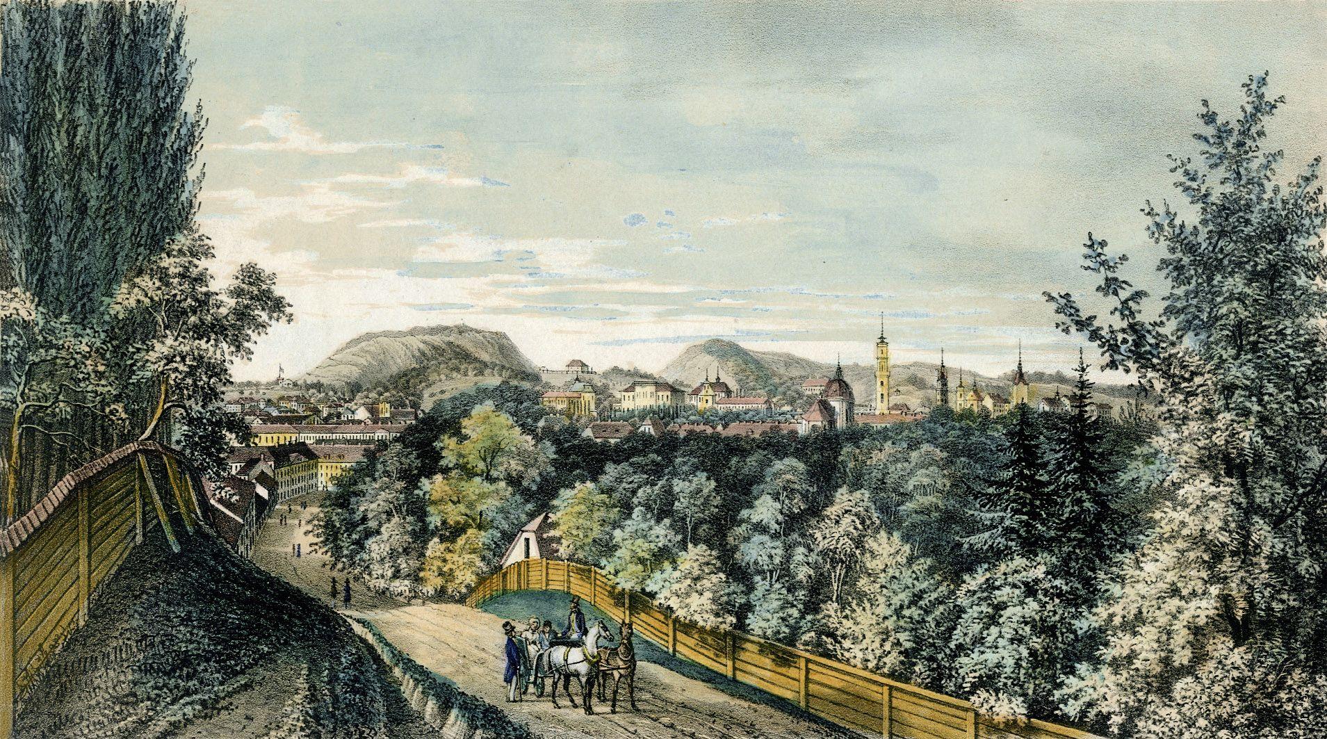 Мацей Боґуш Зиґмунт Стенчинський. Львів з під св.Юра, 1852; літографія