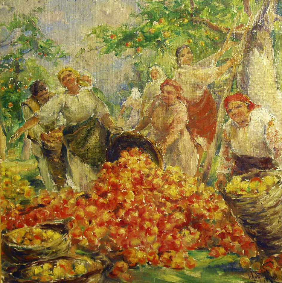 Михайло Добронравов. Збір яблук 1949; полотно, картон, олія