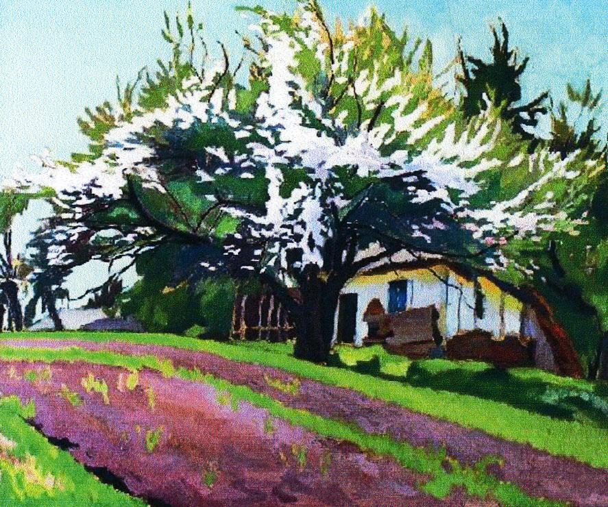 Артур Кляр. Квітуча яблуня, 1920-30-ті; полотно, олія