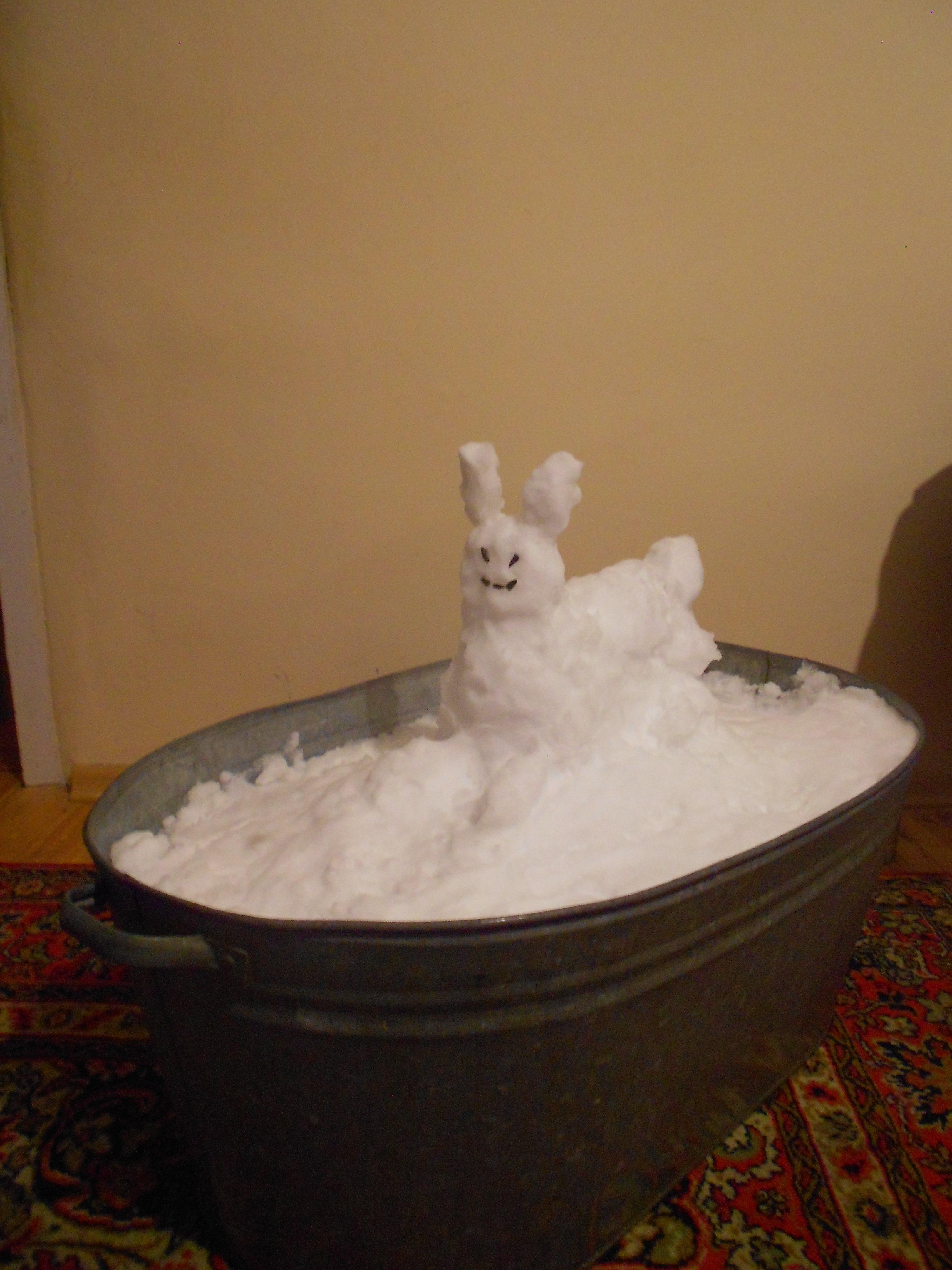 Любомир Тимків. Хатня снігова скульптура, 2018; сніг, орієнтовно 80х100