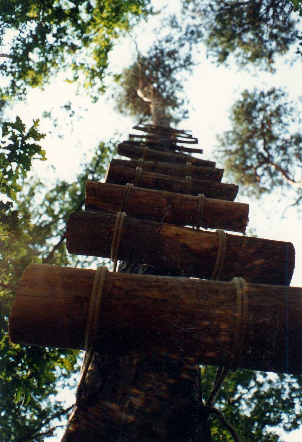 Анна Сидоренко. Лендарт симпозіум Gars am Kamp (Австрія), 1997